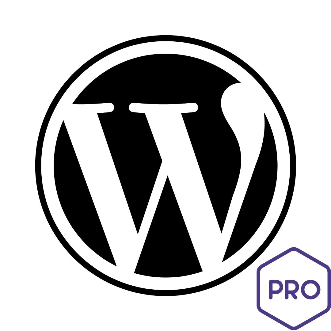 agence expert wordpress professionnel